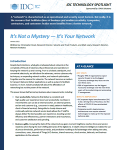 White Paper - It's Not a Mystery, It's Your Network